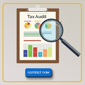 INCOME TAX AUDIT   ce info software solutions
