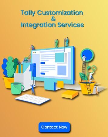 Tally Customization & Integration Services