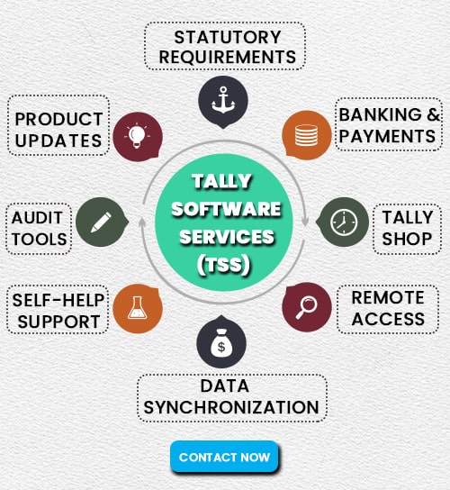 what is Tally Software Services | ce info software solutions