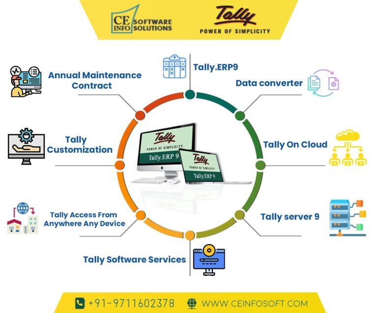 Tally Service Provider in Delhi   India   ce info software solutions